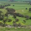 Riverton - Picnic Paddock