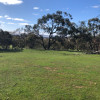 Camping Sites-Wildlife Haven