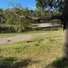 Kookaburra Camp