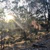 Scrubby Creek Site 2 (2WD Access)
