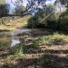 Eastgrove Creekside
