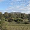 Woodland Views Camping Area