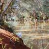 Stunning Woolshed Waterhole