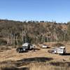 Wild Deer Bush Camp - NO FACILITIES