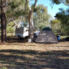 WILLIE WAGTAIL 2WD power opt cosy