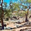 Mt Gipps StationStay Unpowered Caravan Site