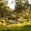 Talbragar River Sites (2WD Access)