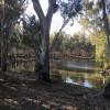 Tooranie Creek Side Campsite
