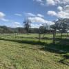 M & S Hobby Farm
