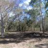 Aussy Bush Curry Main Camp