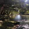 Mena Creek River Retreat