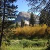 Tuolumne Meadows Walk-In Campground