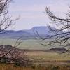 Davis Mountains Primitive Campground