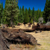South Fork Recreation Campground