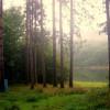 Loleta Recreation Campground