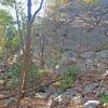 Hogback Camp Area