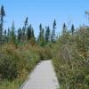 Big Bog Campground