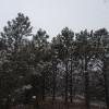 Oakwood Lakes Campground