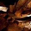 Rickwood Caverns Campground
