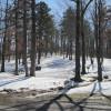 Lake Poinsett Campground