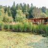 The Pond House
