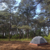 Assateague Island Backcountry Camping