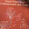 Giant White Pine Campground and Trailhead