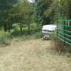 Handmaids Gate Camp