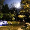 A Walk-in Campsite