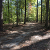 Pine Glen Recreation Area