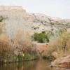 Cactus Campground