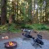Coho Campground