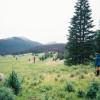 Ute Campground
