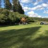 Manville – Camping, Rosalia, WA