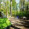 Warren Dunes Campground