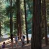 Stoney Point Campground