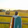 Sequim Prairie Tent Camp