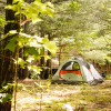 Tent Camping in the Pines