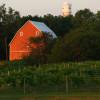 Fox Run Farm Camp