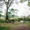 Tent Only - Organic Farm Ann Arbor