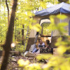 Greenheart Forest Primitive Camping