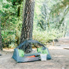 Group Forest Tent Camping