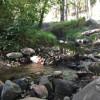 Rose Creek Campground