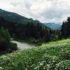 Dolores River Ranch