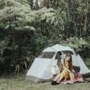 Ola'a Rainforest Hideaway