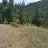 Wild Montana Wilderness