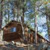 Nostalgic Summer Camp In Forest