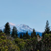 Mt. Shasta Ceremonial Site
