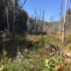 Hillside Valley Camp