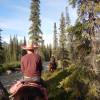 Wilderness Homestead Camping